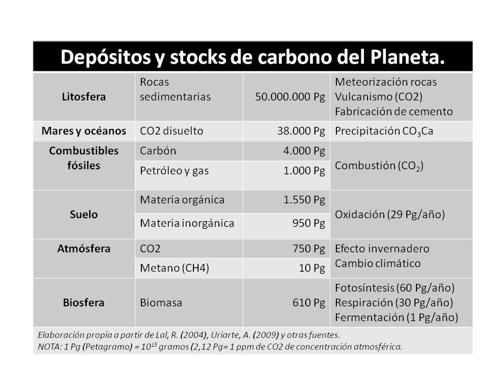 Ciclo del carbono 140315-00